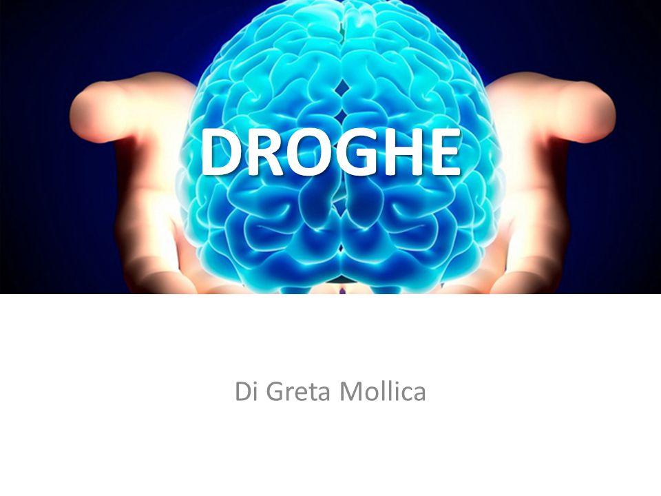 DROGHE Di Greta Mollica