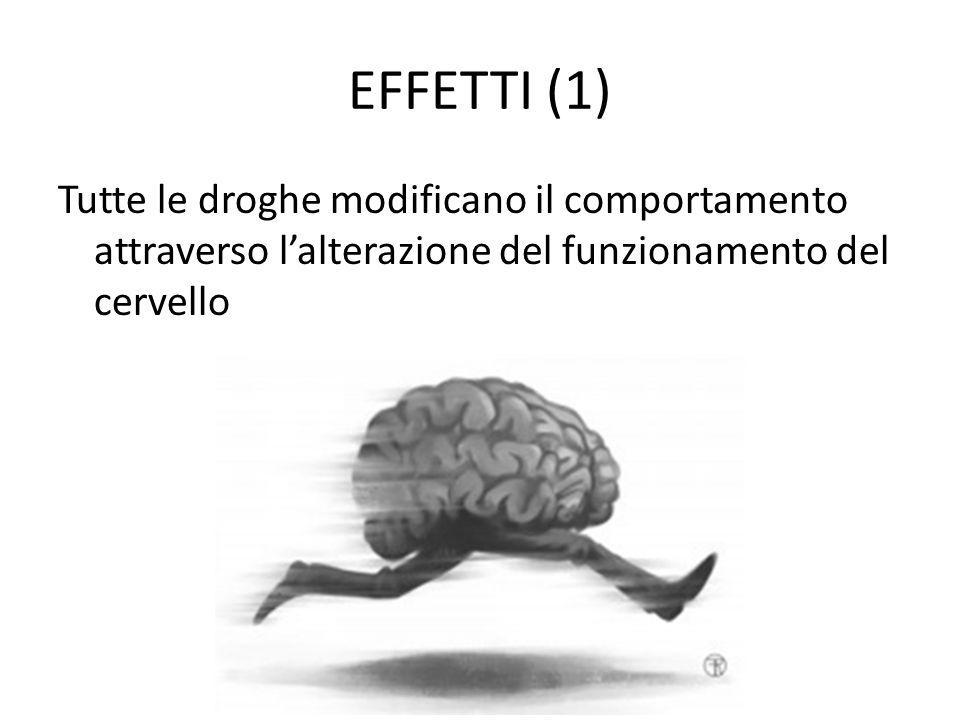 EFFETTI (1) Tutte le droghe modificano il comportamento attraverso l'alterazione del funzionamento del cervello.