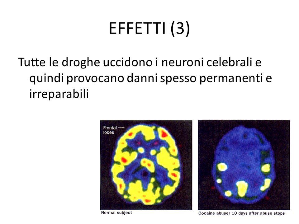 EFFETTI (3) Tutte le droghe uccidono i neuroni celebrali e quindi provocano danni spesso permanenti e irreparabili.