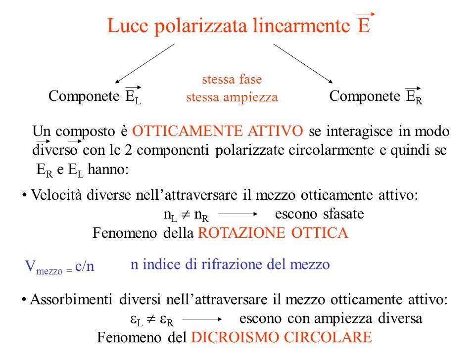 Luce polarizzata linearmente E