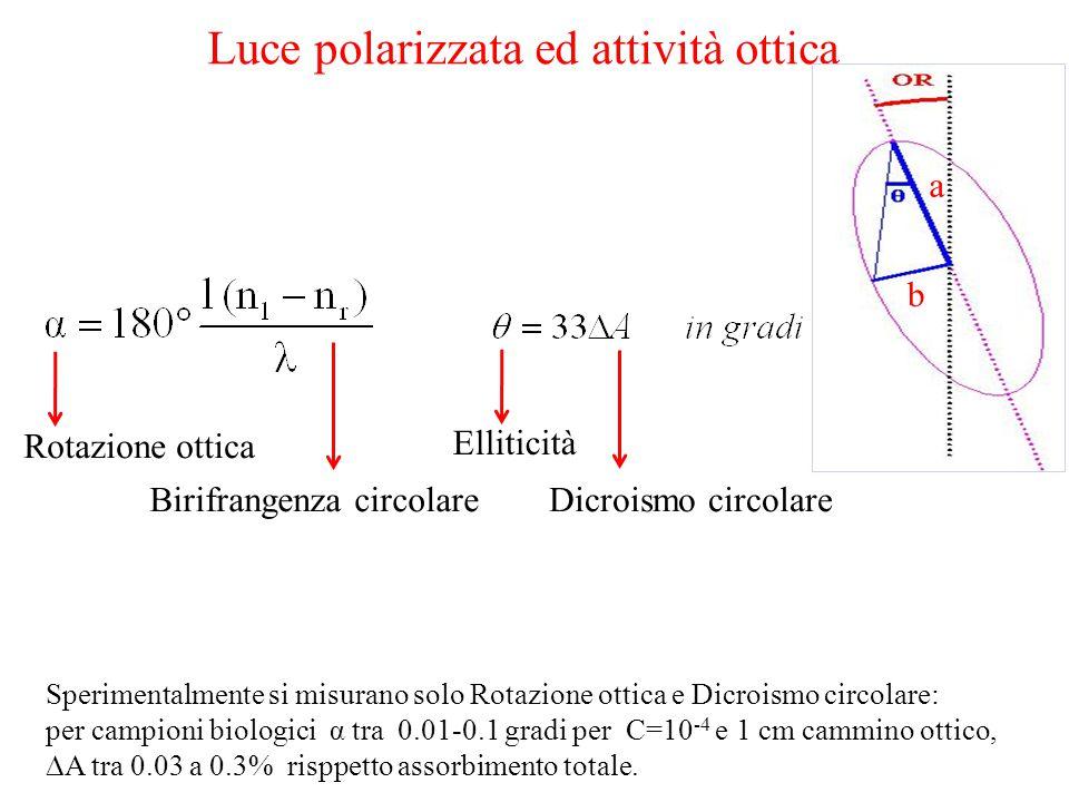 Luce polarizzata ed attività ottica