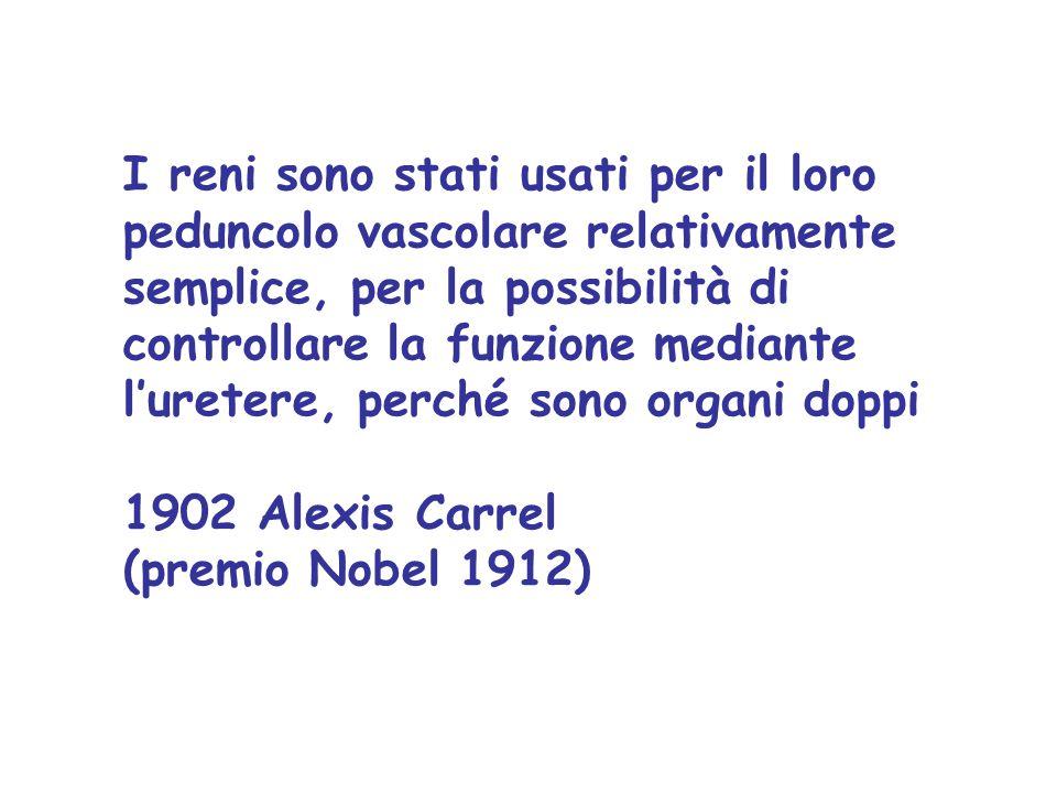 I reni sono stati usati per il loro peduncolo vascolare relativamente semplice, per la possibilità di controllare la funzione mediante l'uretere, perché sono organi doppi 1902 Alexis Carrel (premio Nobel 1912)