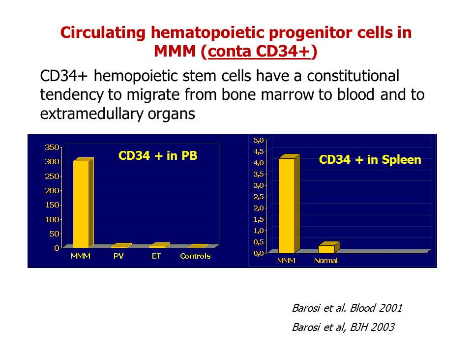 Circulating hematopoietic progenitor cells in MMM (conta CD34+)