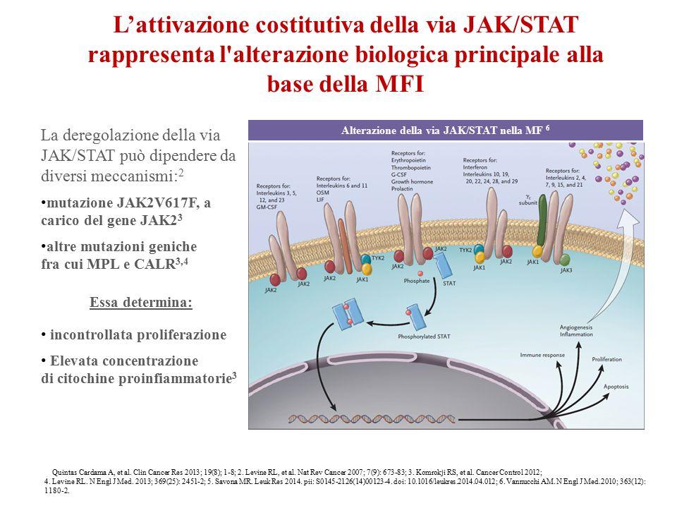 Alterazione della via JAK/STAT nella MF 6