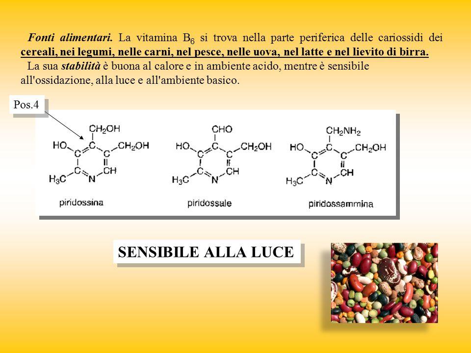 Fonti alimentari. La vitamina B6 si trova nella parte periferica delle cariossidi dei cereali, nei legumi, nelle carni, nel pesce, nelle uova, nel latte e nel lievito di birra.
