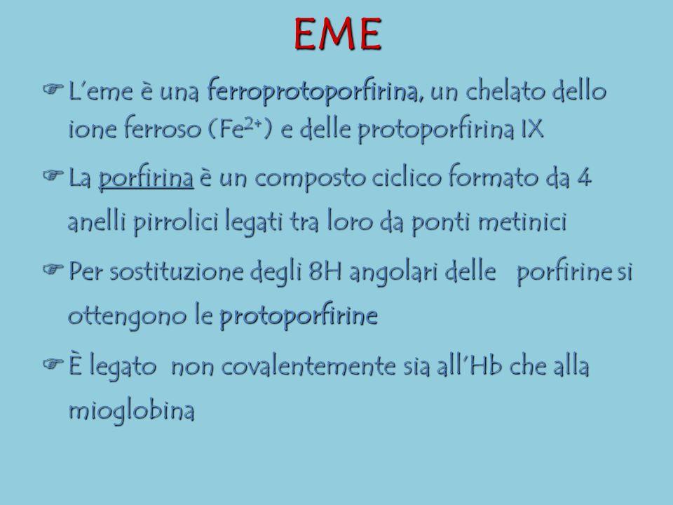EME L'eme è una ferroprotoporfirina, un chelato dello ione ferroso (Fe2+) e delle protoporfirina IX.