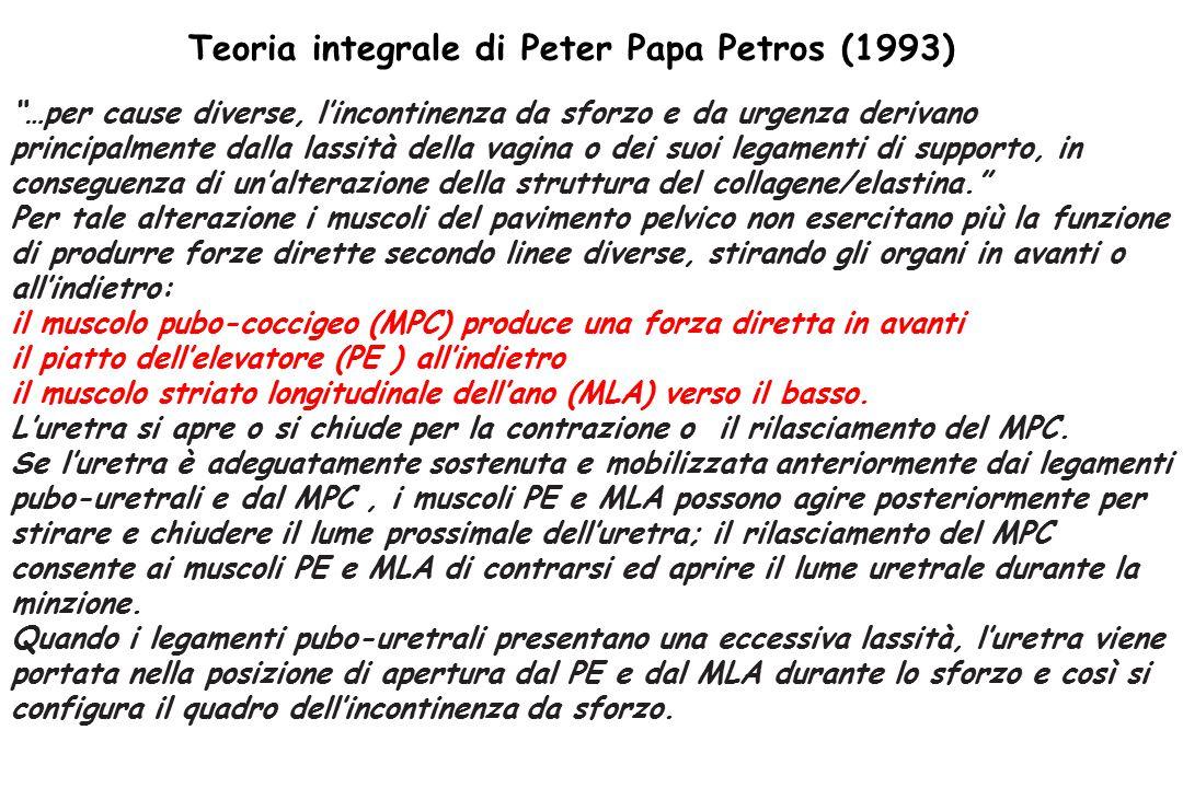 Teoria integrale di Peter Papa Petros (1993)
