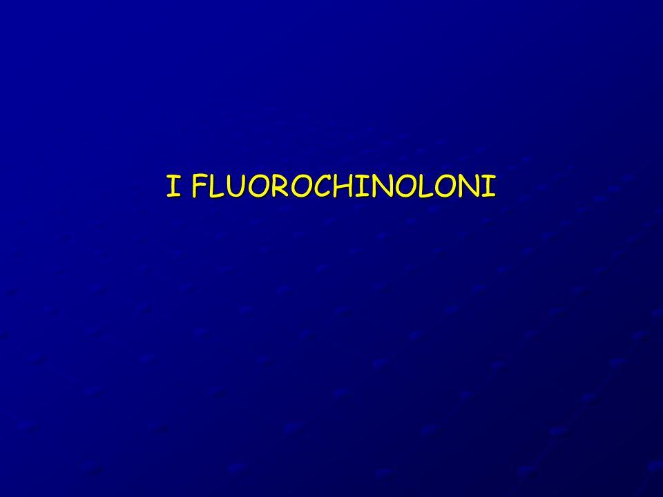 I FLUOROCHINOLONI