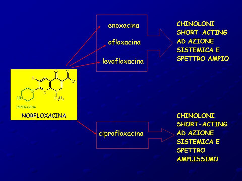 enoxacina ofloxacina levofloxacina ciprofloxacina