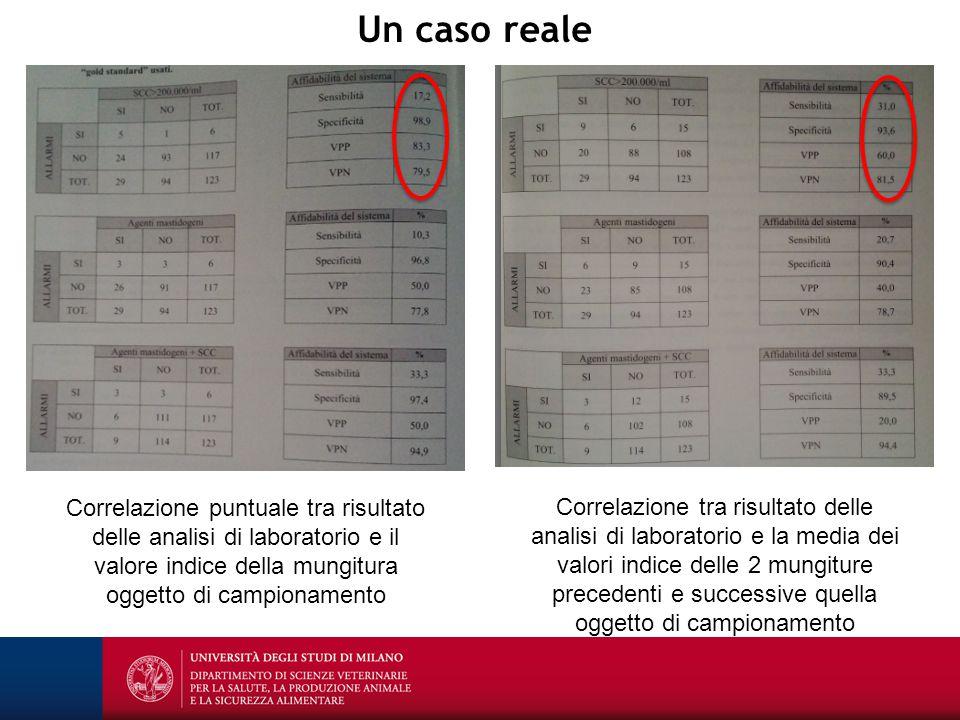 Un caso reale Correlazione puntuale tra risultato delle analisi di laboratorio e il valore indice della mungitura oggetto di campionamento.