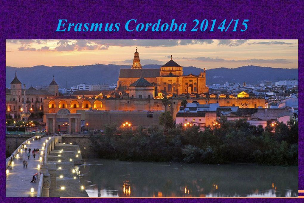 Erasmus Cordoba 2014/15
