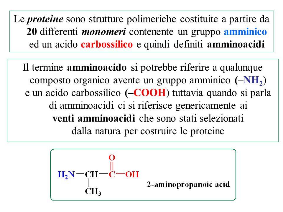 Le proteine sono strutture polimeriche costituite a partire da 20 differenti monomeri contenente un gruppo amminico ed un acido carbossilico e quindi definiti amminoacidi