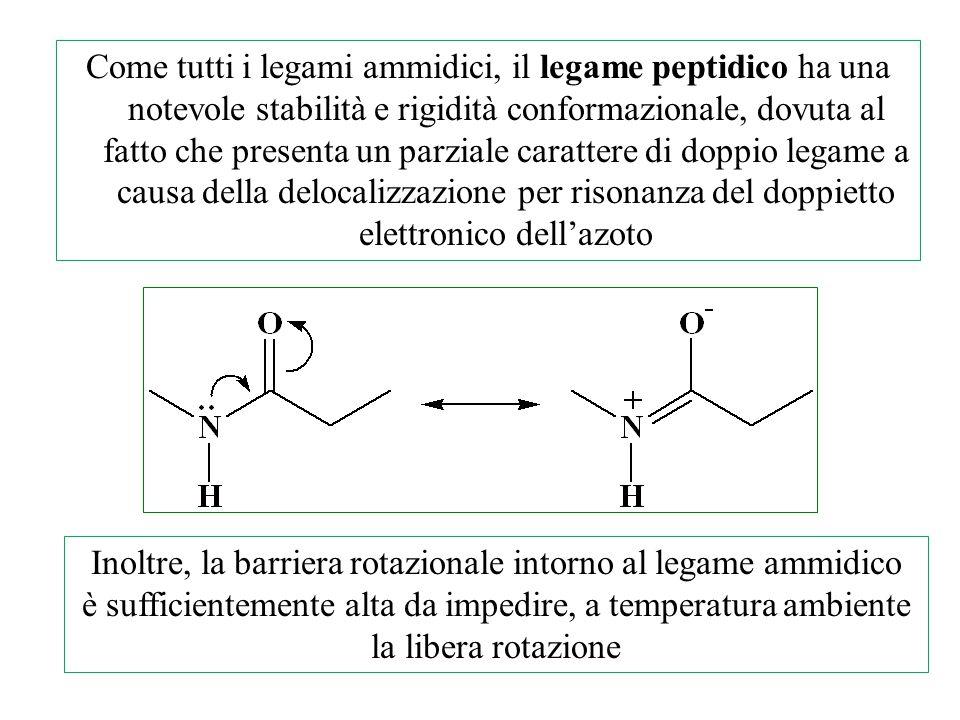 Inoltre, la barriera rotazionale intorno al legame ammidico