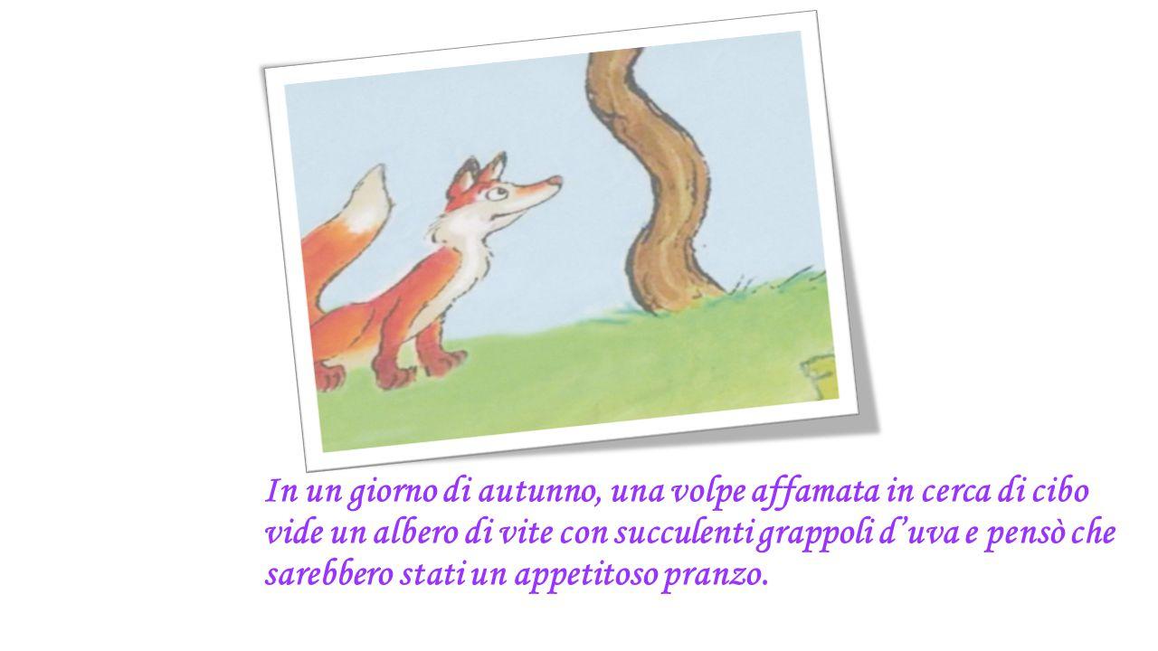 In un giorno di autunno, una volpe affamata in cerca di cibo vide un albero di vite con succulenti grappoli d'uva e pensò che sarebbero stati un appetitoso pranzo.