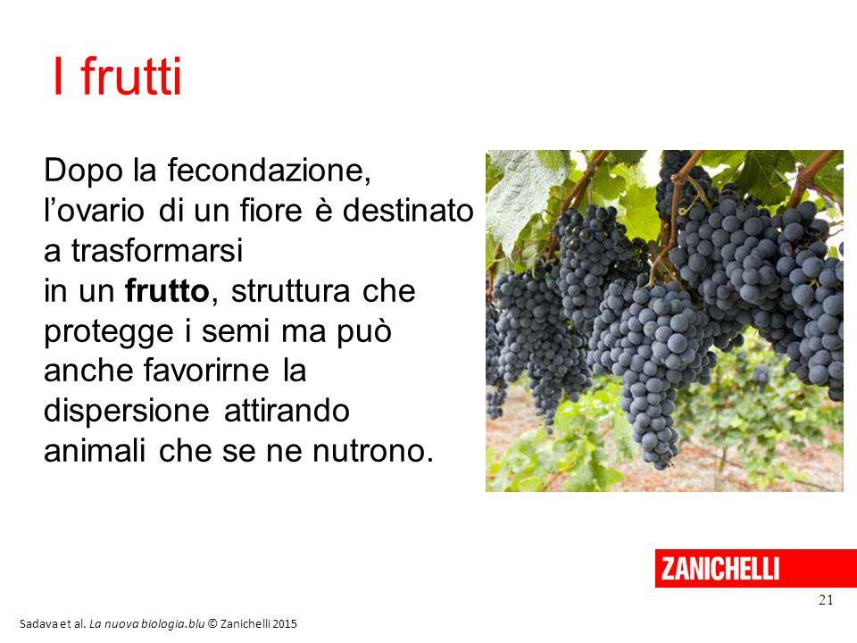 13/11/11 I frutti. Dopo la fecondazione, l'ovario di un fiore è destinato a trasformarsi. in un frutto, struttura che.
