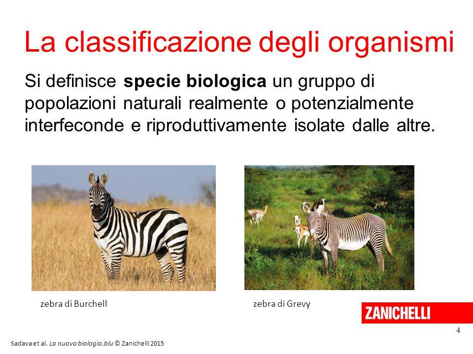 La classificazione degli organismi