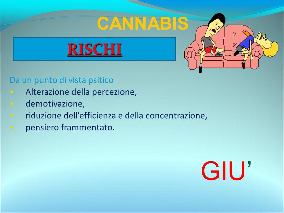 GIU' CANNABIS RISCHI Da un punto di vista psitico