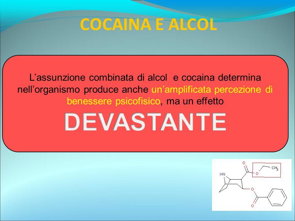 DEVASTANTE COCAINA E ALCOL