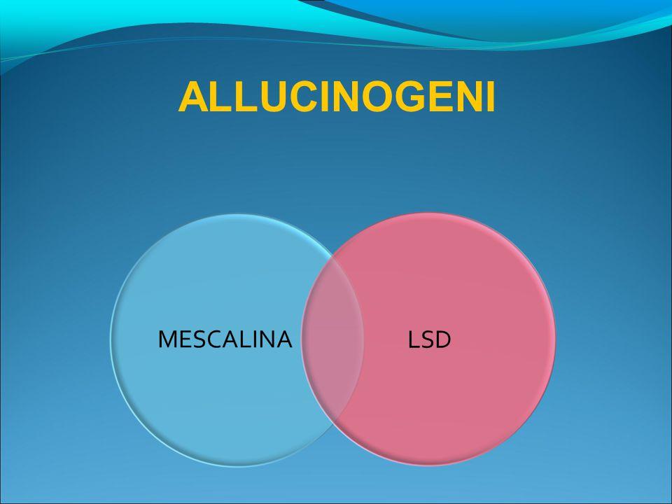 ALLUCINOGENI MESCALINA LSD 28
