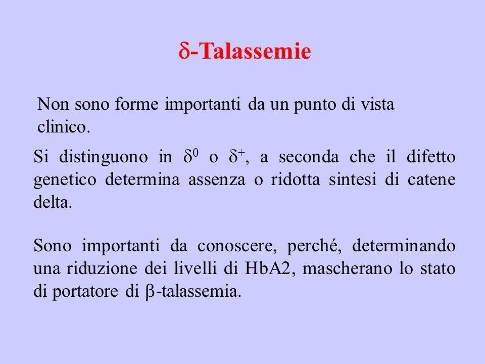 d-Talassemie Non sono forme importanti da un punto di vista clinico.