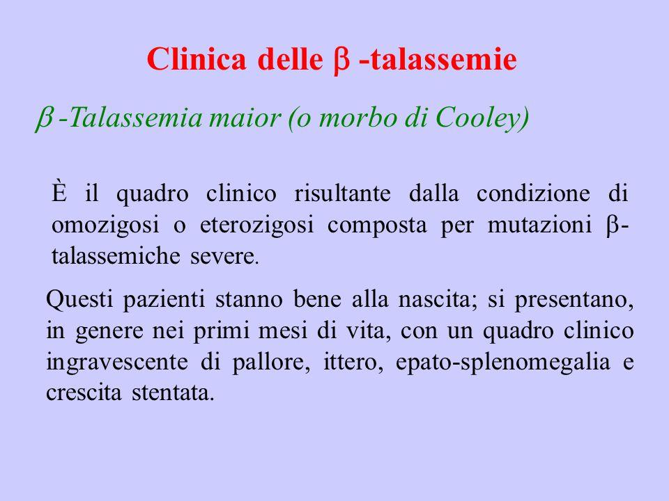 Clinica delle b -talassemie