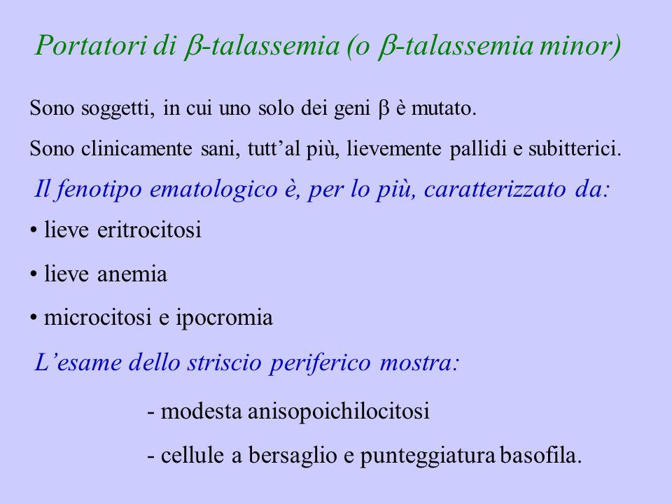 Portatori di b-talassemia (o b-talassemia minor)