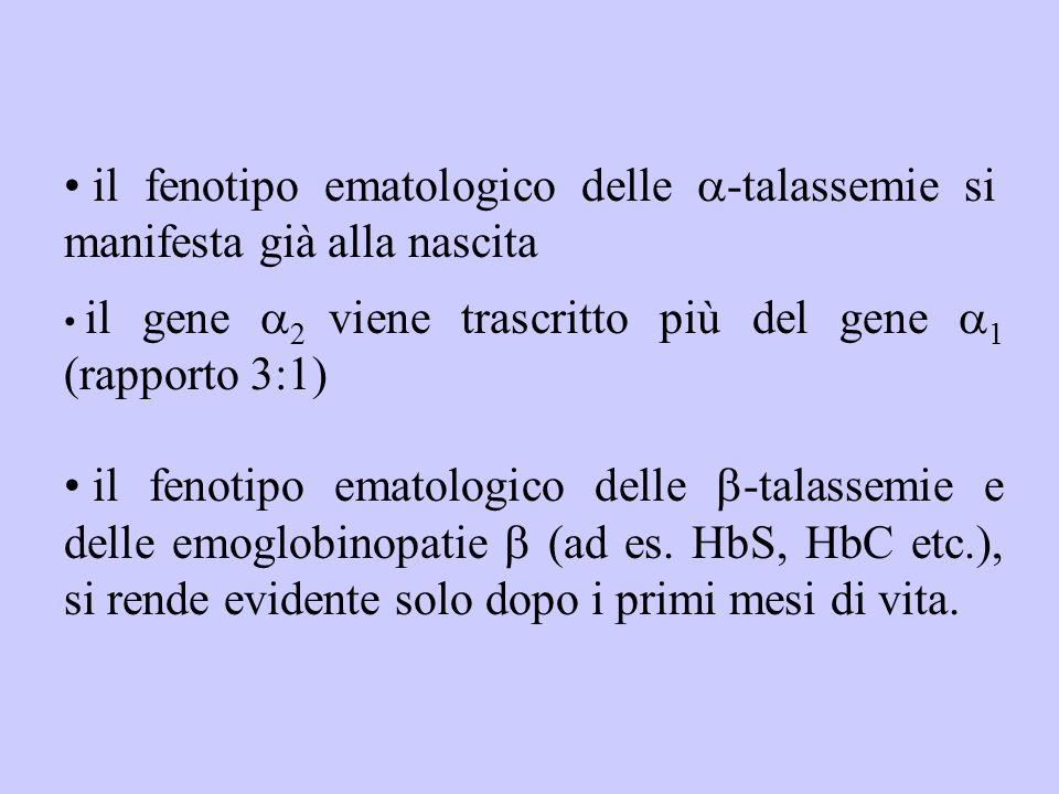 il fenotipo ematologico delle a-talassemie si manifesta già alla nascita