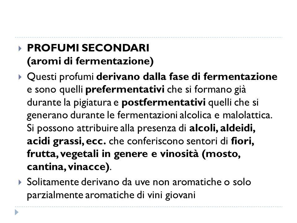 PROFUMI SECONDARI (aromi di fermentazione)