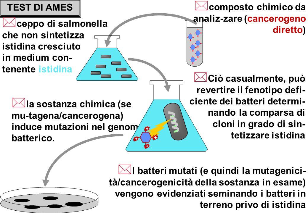 composto chimico da analiz-zare (cancerogeno diretto)
