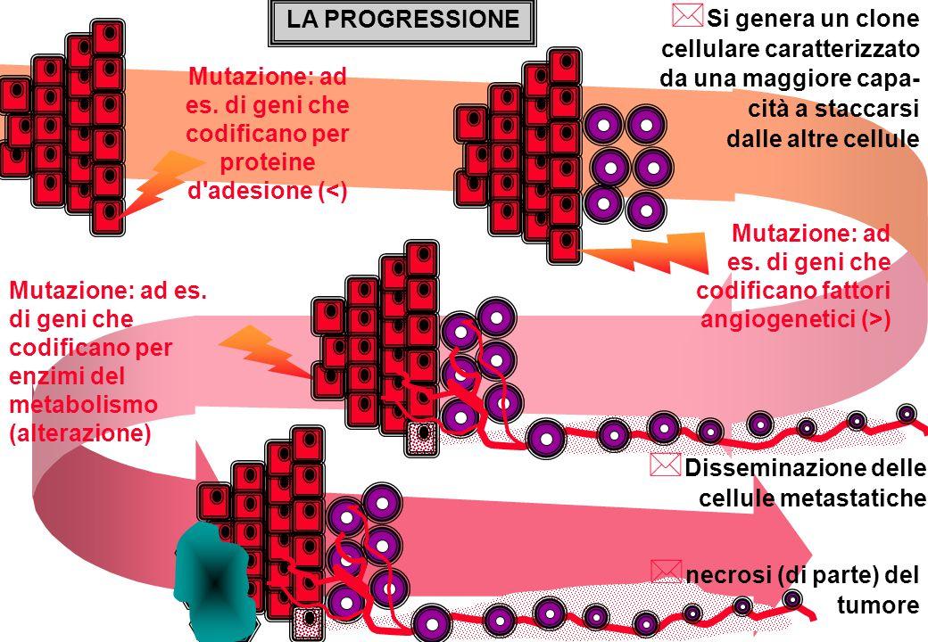 LA PROGRESSIONE Si genera un clone cellulare caratterizzato da una maggiore capa-cità a staccarsi. dalle altre cellule.