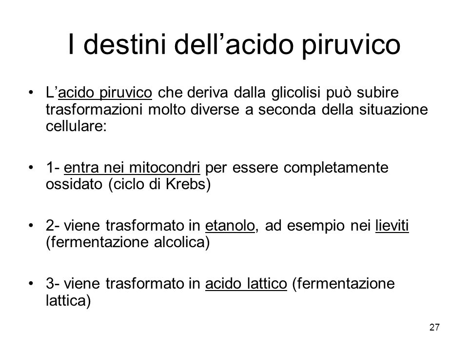 I destini dell'acido piruvico