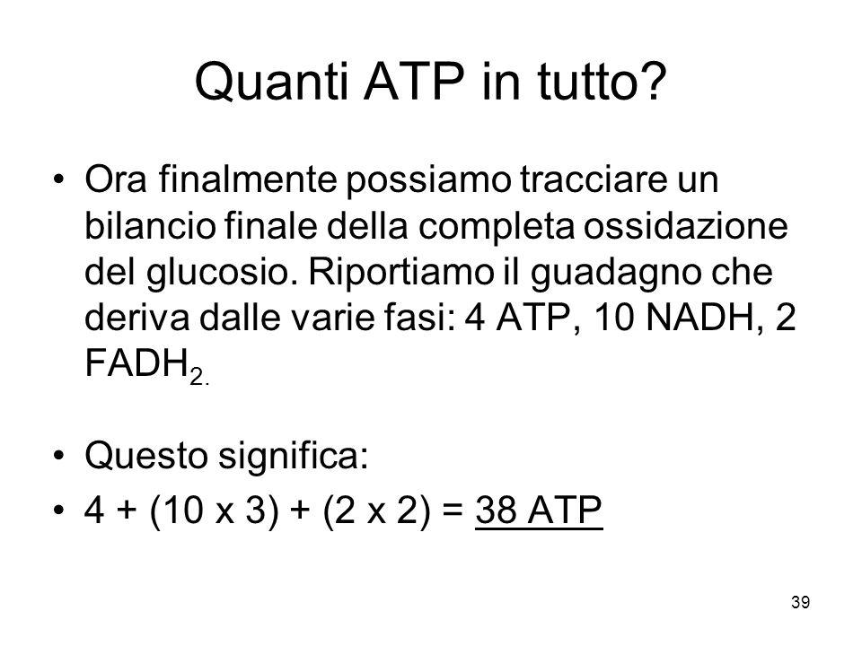 Quanti ATP in tutto