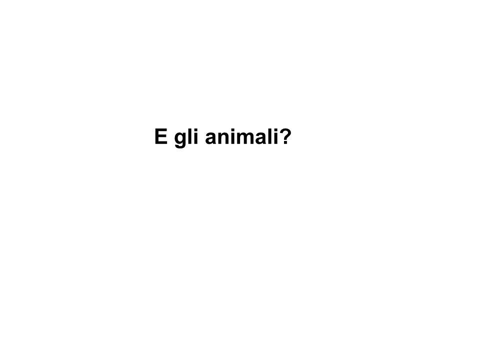 E gli animali
