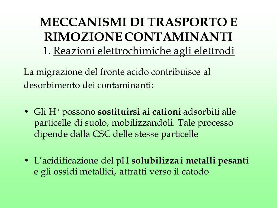 MECCANISMI DI TRASPORTO E RIMOZIONE CONTAMINANTI 1