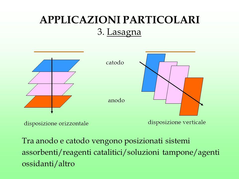 APPLICAZIONI PARTICOLARI 3. Lasagna