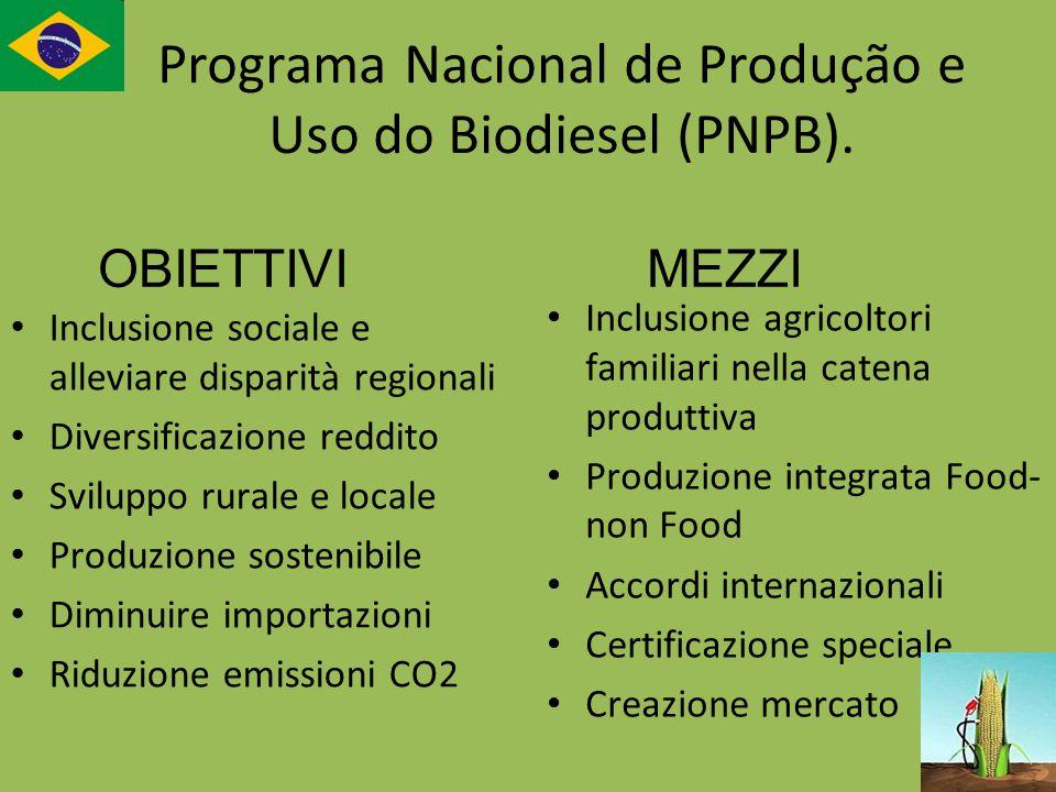 Programa Nacional de Produção e Uso do Biodiesel (PNPB).