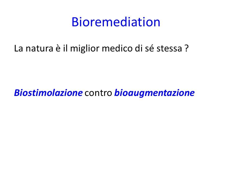 Bioremediation La natura è il miglior medico di sé stessa