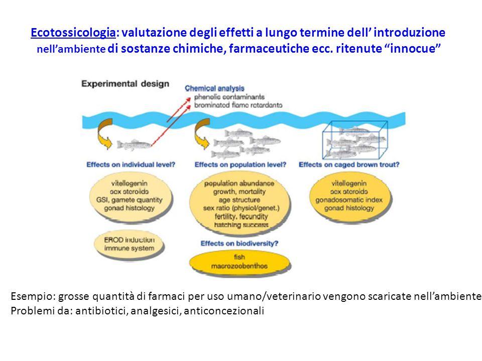 Ecotossicologia: valutazione degli effetti a lungo termine dell' introduzione