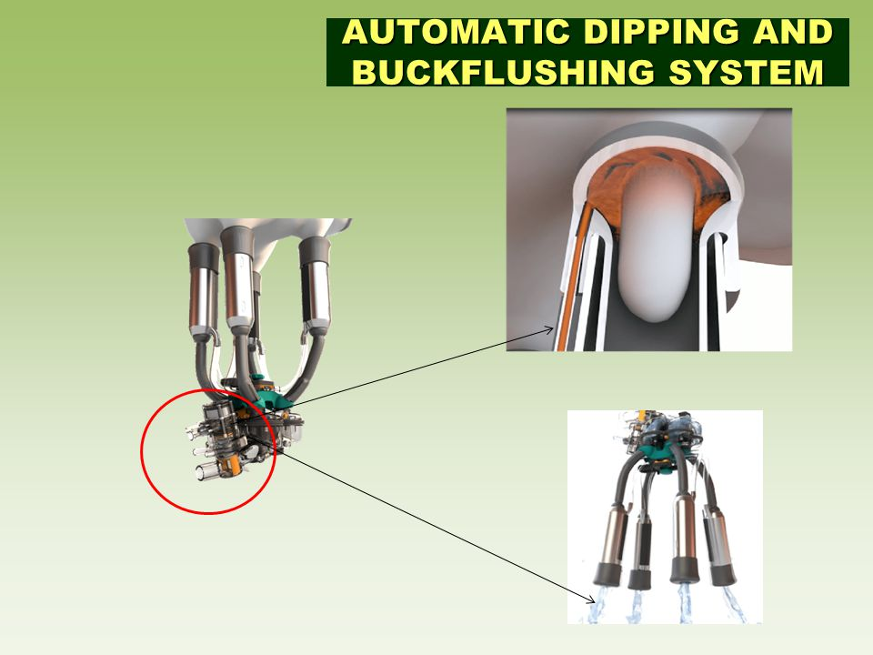 AUTOMATIC DIPPING AND BUCKFLUSHING SYSTEM
