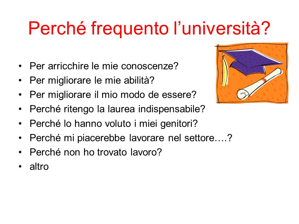 Perché frequento l'università
