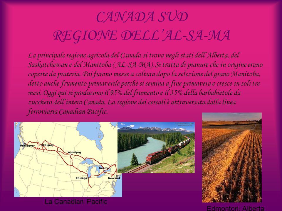 CANADA SUD REGIONE DELL'AL-SA-MA