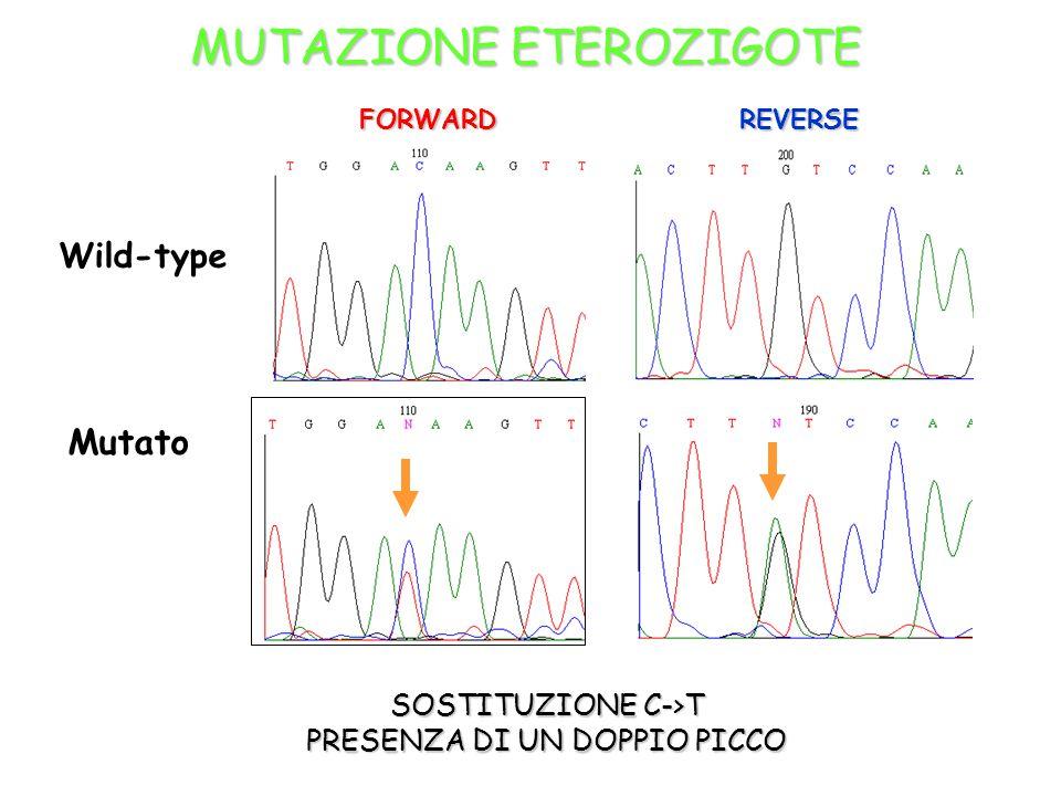 MUTAZIONE ETEROZIGOTE