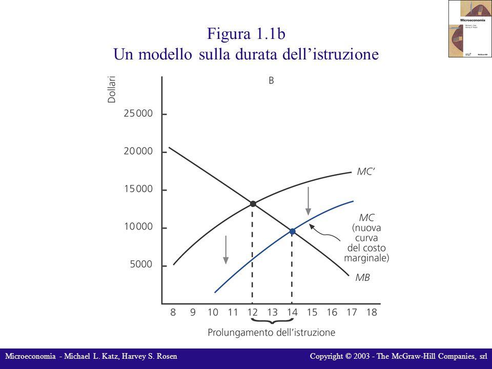 Figura 1.1b Un modello sulla durata dell'istruzione