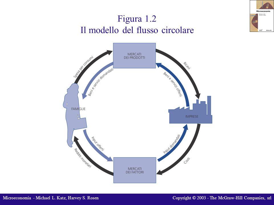 Figura 1.2 Il modello del flusso circolare