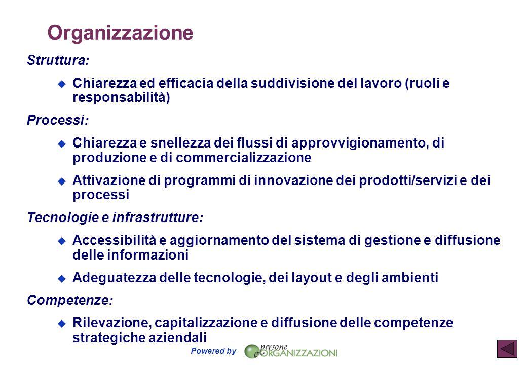 Organizzazione Struttura: