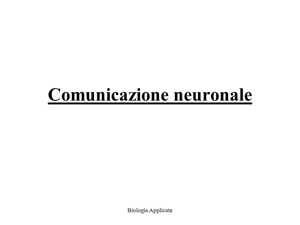 Comunicazione neuronale