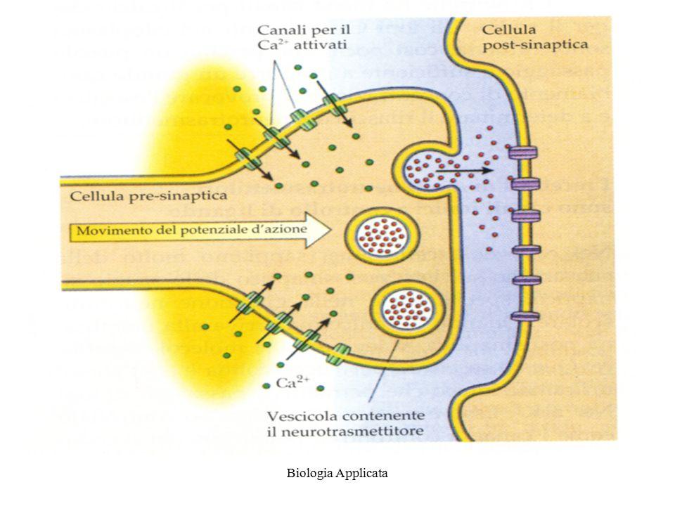 Biologia Applicata