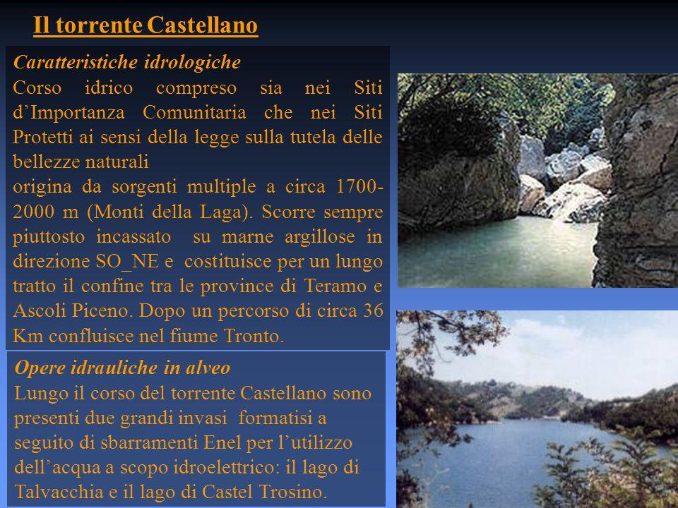 Il torrente Castellano