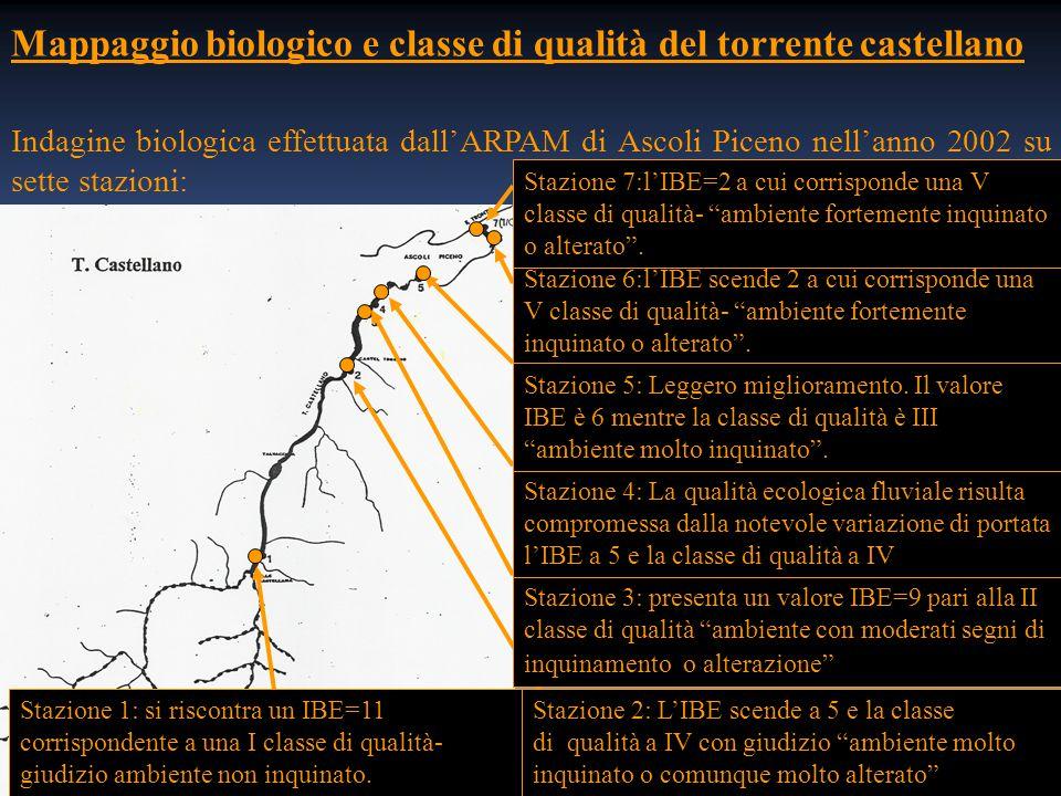 Mappaggio biologico e classe di qualità del torrente castellano