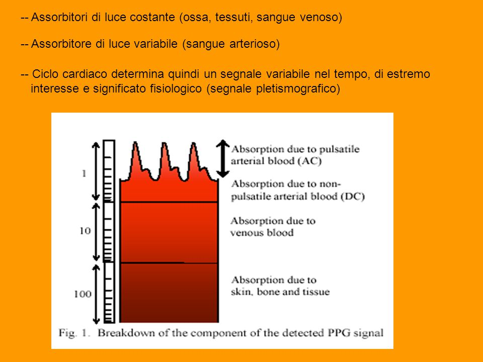 -- Assorbitori di luce costante (ossa, tessuti, sangue venoso)